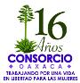 Violencia Feminicida en Oaxaca